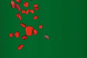 """<div class=""""bildtext"""">6 Laserbild vom Nebengestein • Laser image of gangue</div>"""