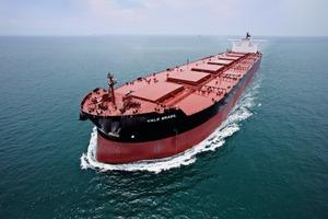 "<div class=""bildtext"">13 Vale Brasil: das größte Erzschiff • Vale Brasil: the biggest bulk ore carrier</div>"
