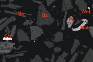 """<div class=""""bildtext"""">6 Stark vergrößertes Rückstreuelektronenbild von silikatischen Gangmineralen (mittel bis dunkelgrau) und Erzmineralen (weiß). Die Wolframerzminerale umfassen Scheelit (Sch) und Wolframit (Wof), zusammen mit Molybdänit (Mol). Die Freilegung der Partikel ist vollständig und die Partikelformen sind sehr kantig ist, da die Trennung entlang der Korngrenzen und ohne Abrieb durch Umwälzen und Mahlen erfolgt ist • Close-up backscatter electron microscope image showing silicate gangue minerals (medium to dark grey) and ore minerals (white). Tungsten ore minerals include scheelite (Sch) and wolframite (Wof), together with molybdenite (Mol). Note that particle liberation is complete and particles are highly angular from separation/liberation along particle boundaries without abrasion from tumbling and milling</div>"""