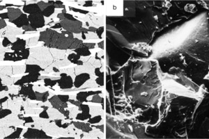 "<div class=""bildtext"">11 BSE-Bild (links – a) [17] und Topographiebild von SE (rechts – b) [42] • BSE image (left – a) [17] and topography image of SE (right – b) [42]</div>"