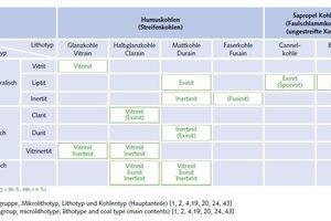 """<div class=""""bildtext"""">30 Maceralgruppe, Mikrolithotyp, Lithotyp und Kohlentyp (Hauptanteile) [1, 2, 4,19, 20, 24, 43] # Maceral group, microlithotype, lithotype and coal type (main contents) [1, 2, 4,19, 20, 24, 43]</div>"""