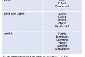 "<div class=""bildtext"">31 Maceralgruppen und Macerale [19,20,54] # Maceral groups and macerals [19,20,54]</div>"