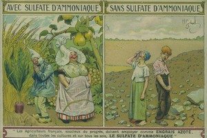 "<div class=""bildtext"">An old postcard from France: Farmers who fertilize with ammonium sulfate will harvest the biggest beets and pears. Farmers who think they can do without may face starvation and their darkest fears. </div>"