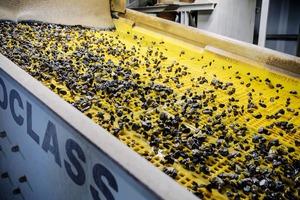 """<div class=""""bildtext"""">5 <irspacing style=""""letter-spacing: -0.002em;"""">Das abgebaute Material wird im Kibag Kies- und Betonwerk nach Korngrößen sortiert, gereinigt, allenfalls zwischengelagert und schließlich auf LKW oder Bahnwagen verladen oder im Betonwerk vor Ort für die Produktion verwendet • At the Kibag gravel and cement plant, the excavated material is sorted by particle size, cleaned, temporarily stored and finally loaded onto trucks or railway wagons or used in the on-site cement works for production</irspacing></div>"""