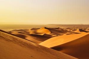 "<div class=""bildtext"">Sand, soweit das Auge reicht • Sand, as far as the eye can see</div>"