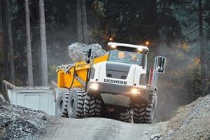 Liebherr-Muldenkipper TA230 ● New dump truck TA230