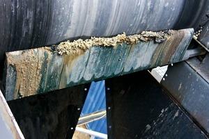 4 Die Gurtabstreifer von Schulte Strathaus erzielen eine Reinigungsleistung von etwa 90% # The belt scrapers from Schulte Strathaus achieve around 90% cleaning efficiency