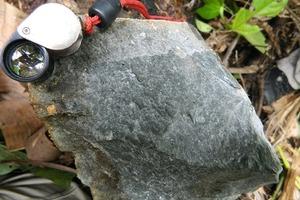 Fonolitgestein aus der Roraima-Region/Nordbrasilien # Fonolite rocks of the Roraima region/North of Brasil<br />