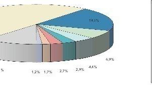 4 Wichtigste Verbrauchsländer neben China ● Most important countries of consumption apart from China