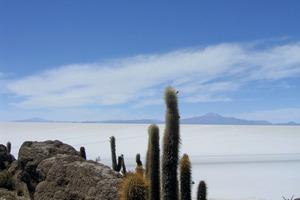 1 Aussicht über den Salzsee ● View over the salt lake