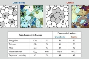 "<div class=""bildtext"">15 Verteilung der Mikrokörper: Granodiorit (Oberottendorf) – dispergierte Phase, Granit (Baden-Baden) – agglomerierte Phase • Distribution of the microbodies: granodiorite (Oberottendorf) – dispersed phase, granite (Baden-Baden) – agglomerated phase</div>"